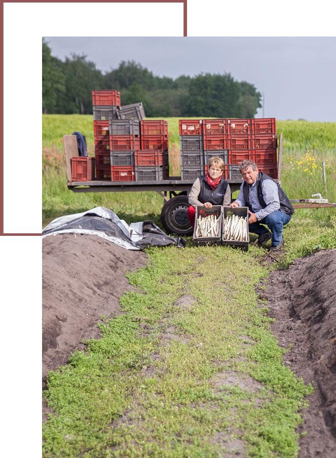 Danielle et Jean-Pierre, producteurs de la marque d'asperges du blayais Blandine